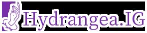 <p>Hydrangea.IG</p><p>(JNEC)ネイリスト検定1級取得 2006年<br></p>